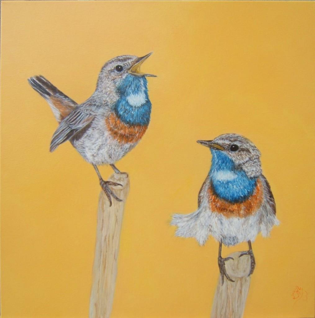 Peinture acrylique oiseau gorge bleue à miroir