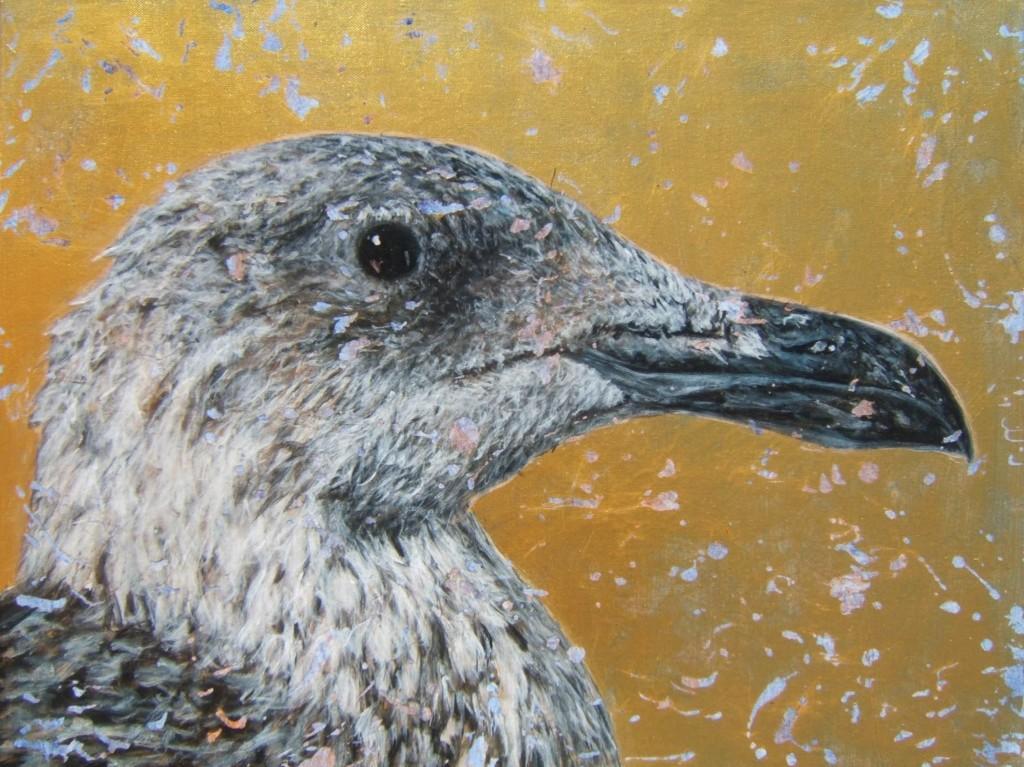 Peinture acrylique oiseau goéland leucophée