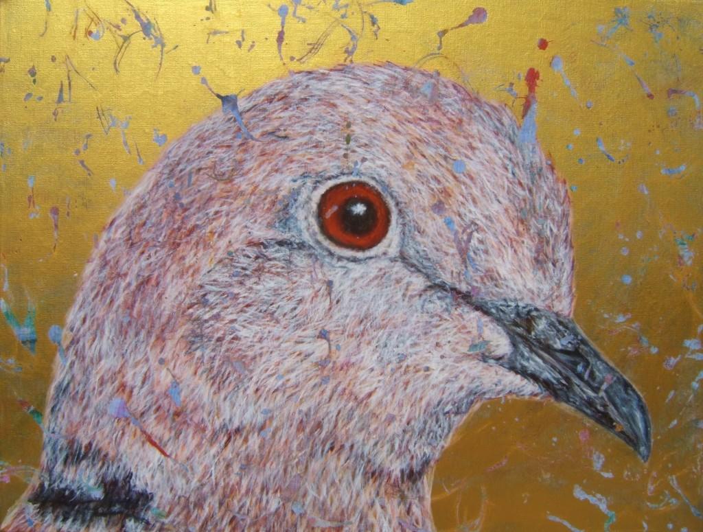 Peinture acrylique oiseau tourterelle turque